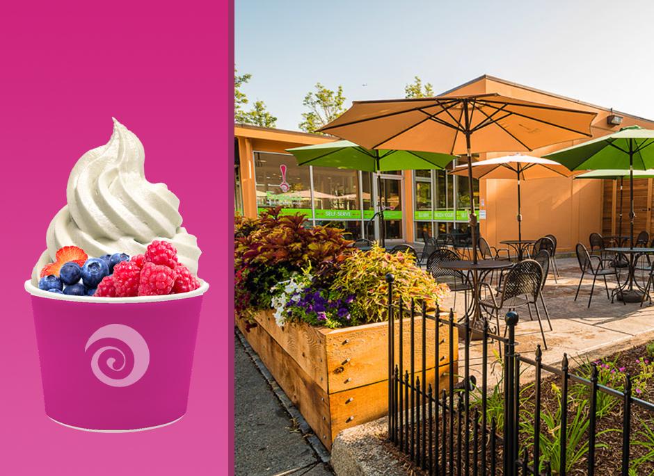 Portfolio_detail_page_frenzi-frozen-yogurt