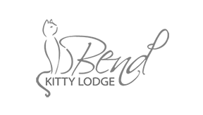 SM_Case_Study_box_bend_kitty_lodge