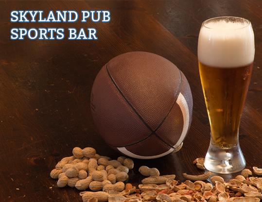 Brainjar_Media_portfolio_skyland-pub